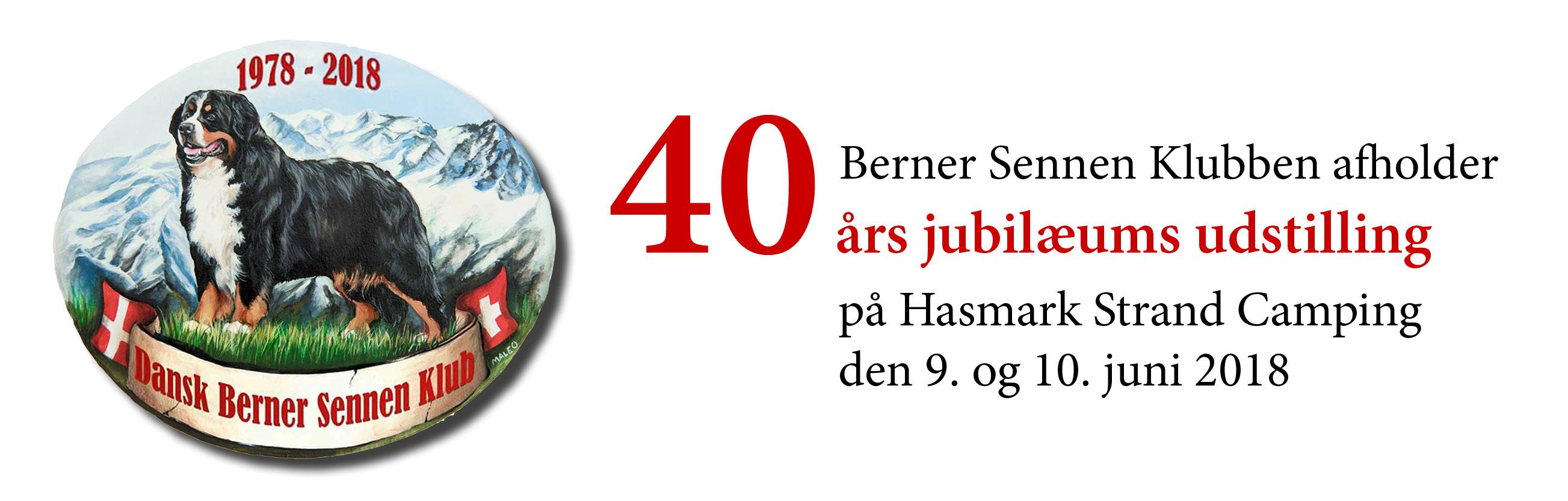 Dansk Berner sennen Klub